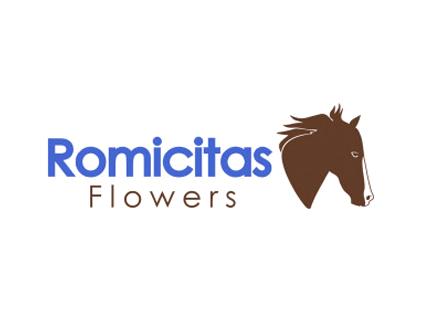 Romicitas